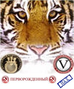 post-2803-0-42719400-1379530100_thumb.jpg