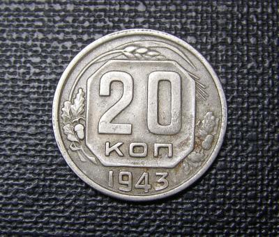 P1010232.JPG