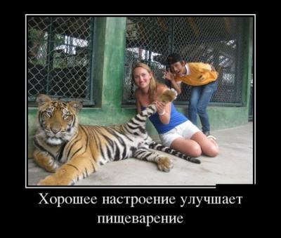 post-12908-0-06745500-1386856645_thumb.jpg