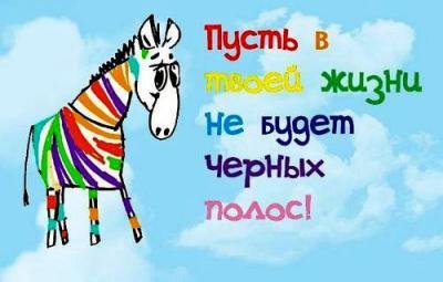 prikolnoe-pozdravlenie-s-dnem-rojdeniya-zebra.jpg