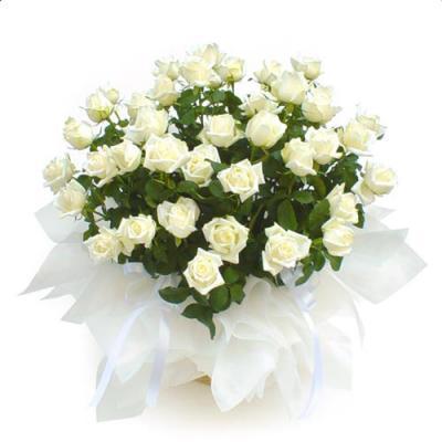 sp_white_roses.jpg