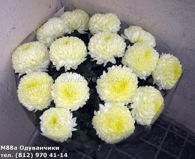 post-25685-0-60144700-1387732489_thumb.jpg