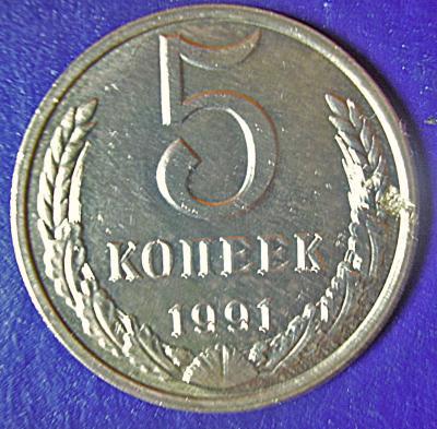 5_k_1991(4).jpg