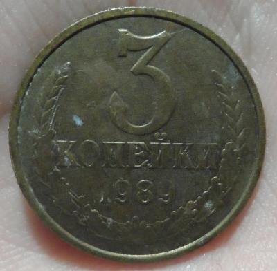 SAM_1917.JPG