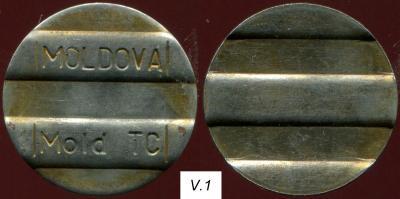 MoldTC-V.1.jpg