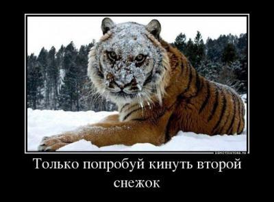 post-22515-0-19069700-1403260416_thumb.jpg