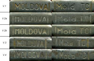 MoldTC-V.jpg