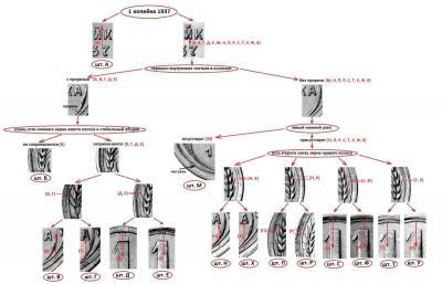 post-30903-0-67261300-1405785661_thumb.jpg