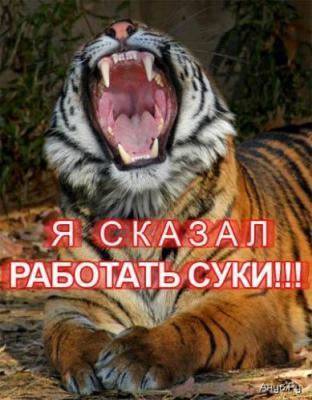 post-25184-0-02232700-1405938299_thumb.jpg