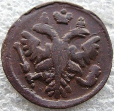 1736_.jpg