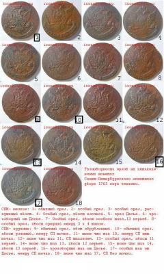 разновидности 5 1763 спм.jpg
