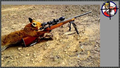 снайпер.jpg