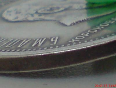 DSC00033_cr.jpg