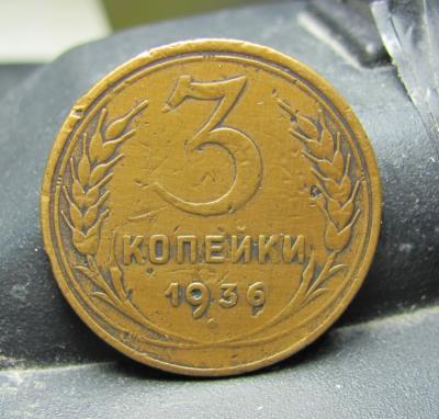 304.5.JPG