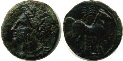 cTU-99Zaugitana-Carthage-AE15 c.300BC.jpg