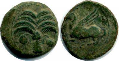 cTU-100Zaugitana-Carthage AE14 c.340-320BC.jpg