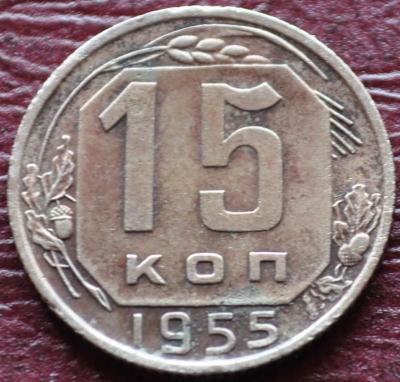 19551.JPG