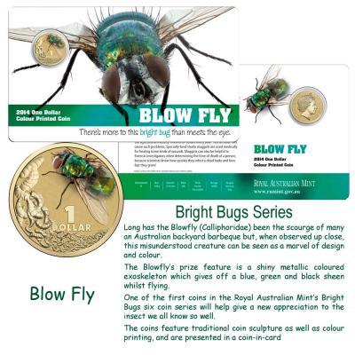 2014-BrightBugs-Unc-Blowfly-Pkg.jpg