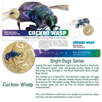 2014-BrightBugs-Cuckoo-Wasp-Pkg.jpg