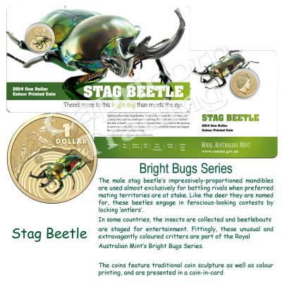 2014-BrightBugs-Unc-Stag-Beetle-Pkg.jpg