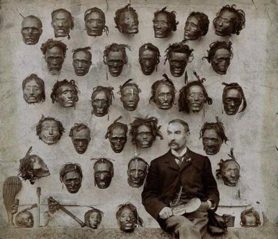 Коллекция голов маори.jpg