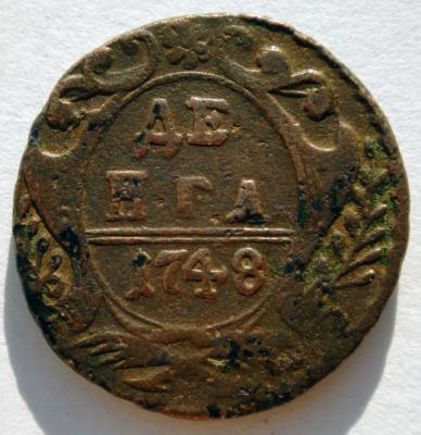 1748 широкий хвост (3).jpg