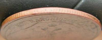 DSCN3205 (2).JPG