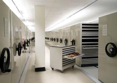 Museum-storage-cabinets-drawers-544x389.jpg