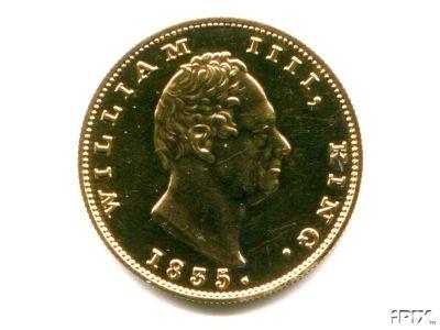 India William Double mohur 1835.jpg