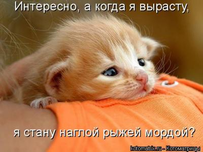 post-13471-0-24086500-1450775050_thumb.jpg