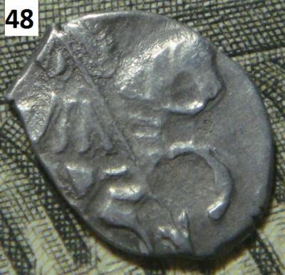 Чешуя 48 (2).JPG