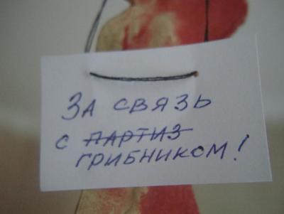 post-17848-0-63200200-1451817919_thumb.jpg