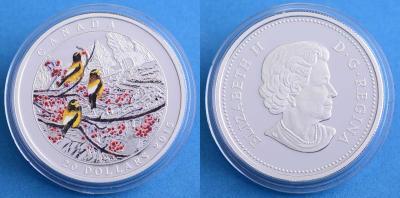 Канада $ 20 2015 Времена года зима.jpg