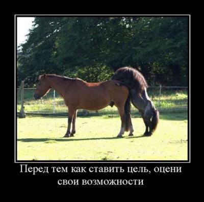 post-34646-0-27108800-1464542180_thumb.jpg