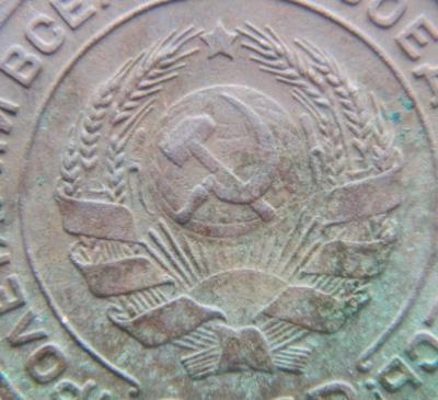 DSCN7331.JPG