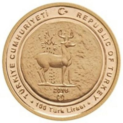 ТУРЦИЯ 2016 г., 100 турецких лир, золото.JPG