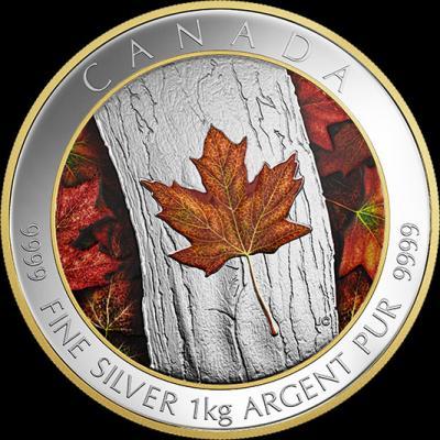 Канада 250 канадских долларов, 2016 (реверс).jpg