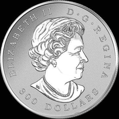 Канада 300 долларов 2016, кленовые листья (аверс).jpg