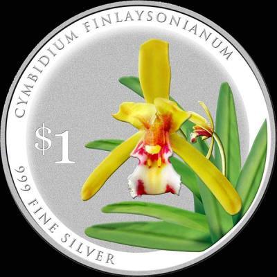 Сингапур 1 доллар 2016 орхидея  Цимбидиум Финлейсона (лат. Cymbidium-finlaysonianum).jpg