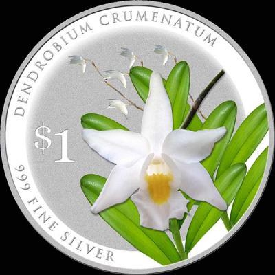 Сингапур 1 доллар 2016 орхидея Дендробиум круменатум (лат. Dendrobium-crumenatum).jpg