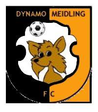29FC_Dynamo_Meidling.jpg