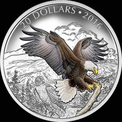 Канада,  2016  20 долларов Белоголовый орлан.jpg