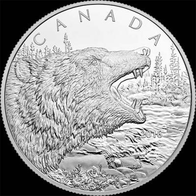 Канада,  2016  125 долларов Гризли (реверс).jpg