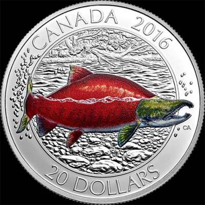 Канада, 2016 20 долларов Нерка (реверс).jpg