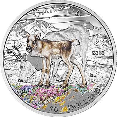 Канада 20 долларов 2015года (Северный олень - детёныш).jpg