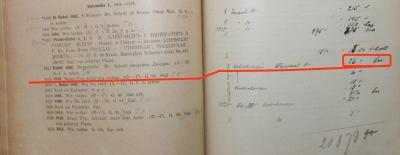 1919 mai3.jpg