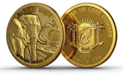 2016-ALC-African-Pride-Elephant-Ivory-Coast.jpg