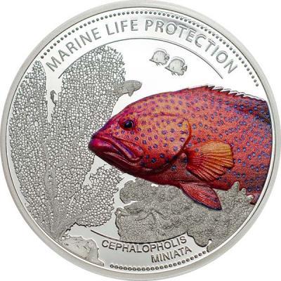 Палау 5 долларов 2016 год - Групер красный коралловый.jpg