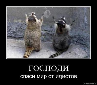 post-23117-0-47249500-1474559761_thumb.jpg