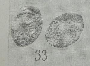 DSCN0938.JPG